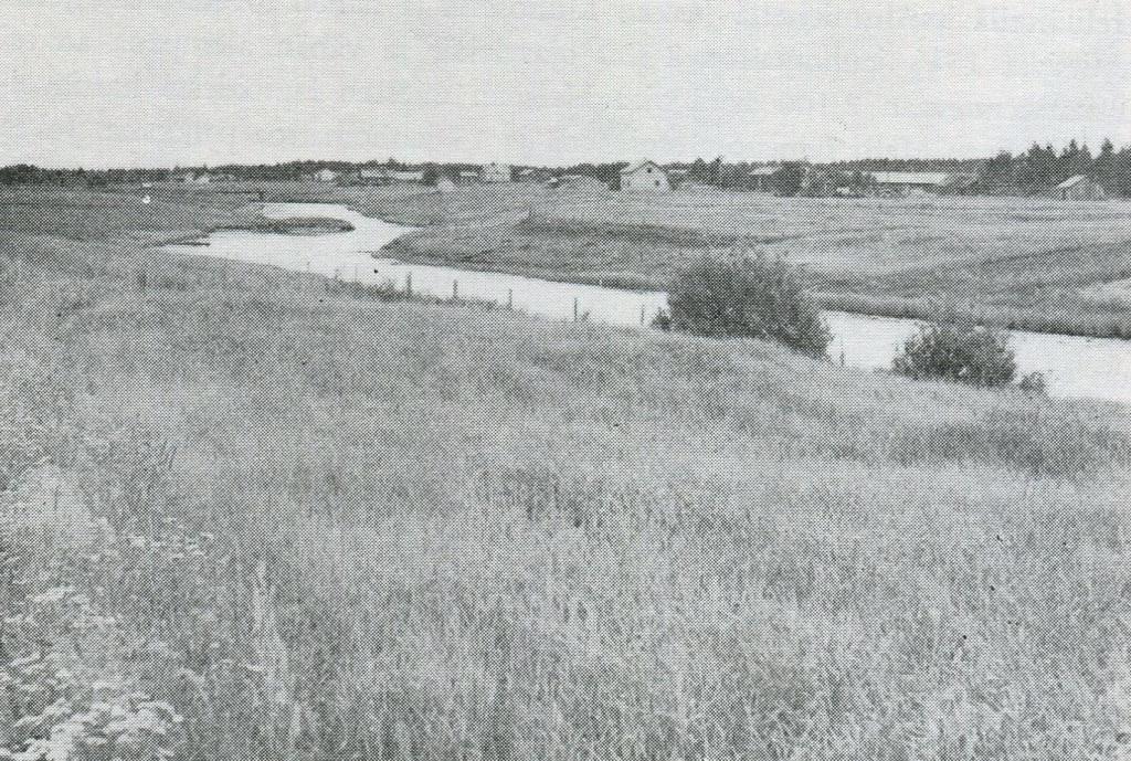 Jokivarren peltoja Ukskoskella - Kuva  Pentti Virrankoski 1959