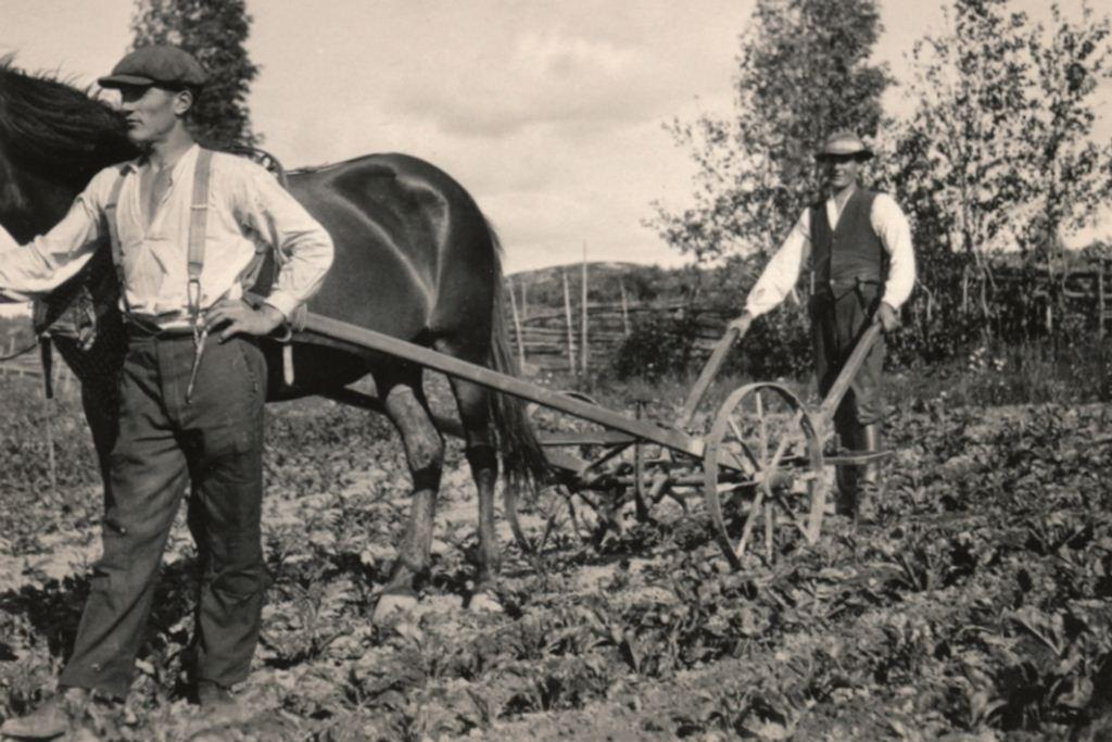 Pusalan Passarin tilalla kesällä 1928 web
