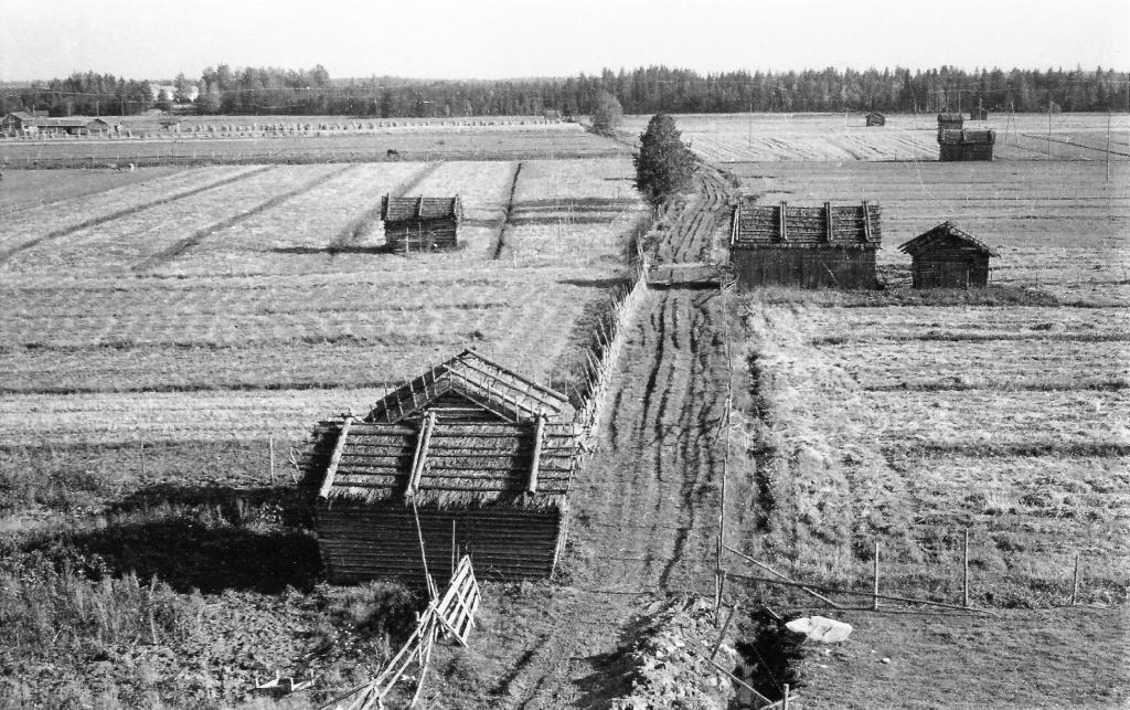 S-VK-0609W - Näkymä Keskitalon pihasta Peltokankaan tanhualle
