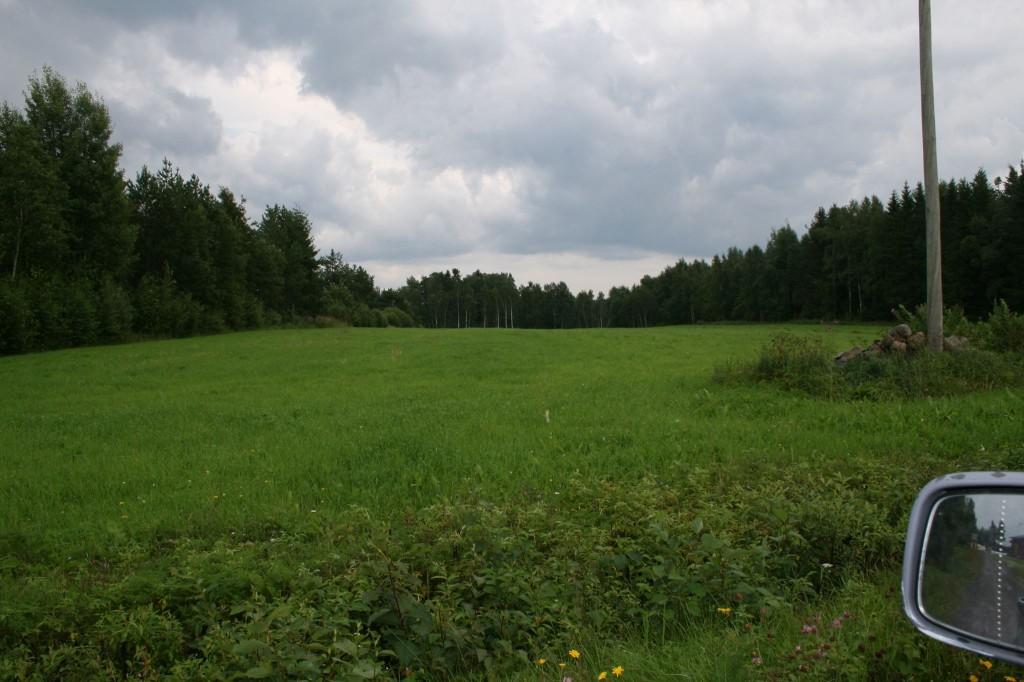 Salmelan Lapinkankaanpelto 2012 - Jorma Salmela
