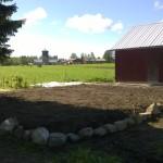 Hääkoivun juurelta iso kompostikasa, joka perattiin siihen ensimmäisenä kesänä koko pihamaalta, levitettiin kasvimaaksi navetan eteen Tapanin puolelle.