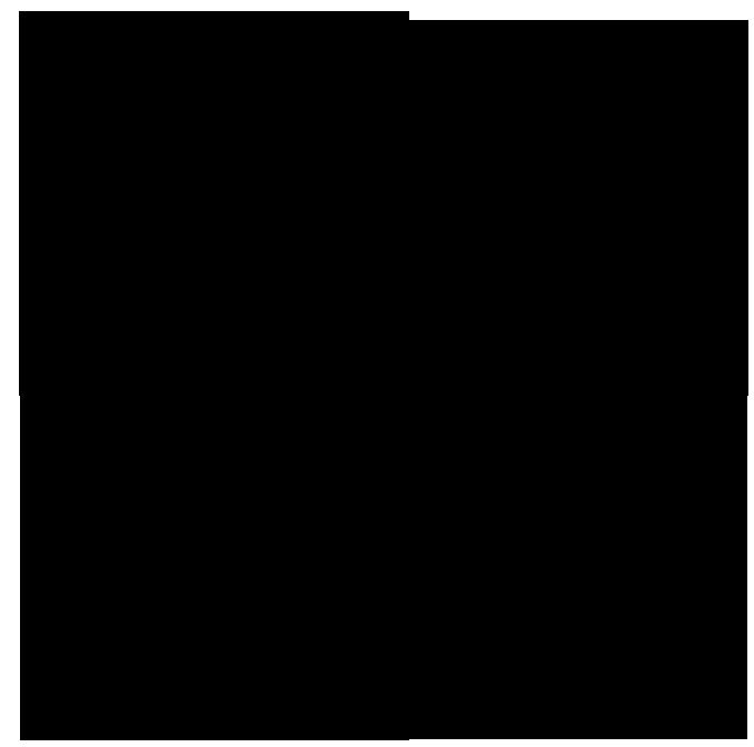 salmelaleima